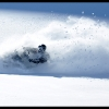 2011-trennis-baer-in-the-powder-in-br-web